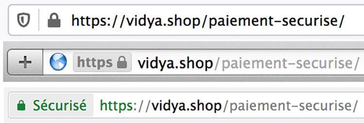 Vidya_secure-payment_https-protocol