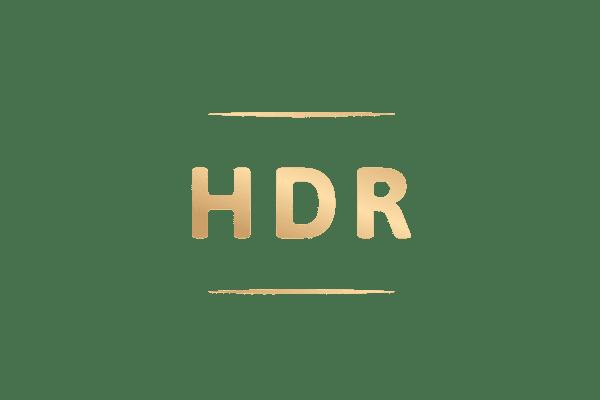 vidya_nos-marques_logo-color_hdr
