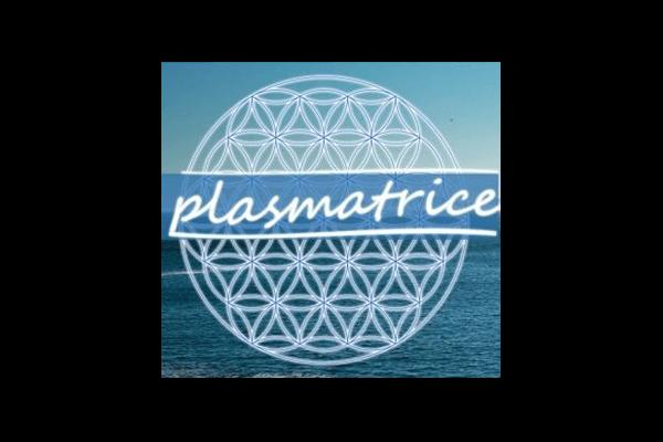 vidya_marques-partenaires_logo-color_plasmatrice