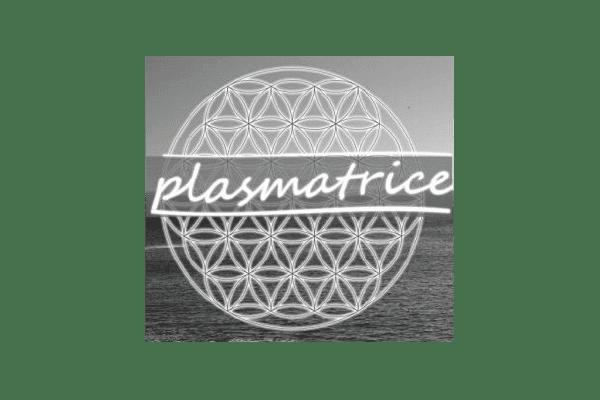vidya_marque partenaire_logo-nb_plasmatrice